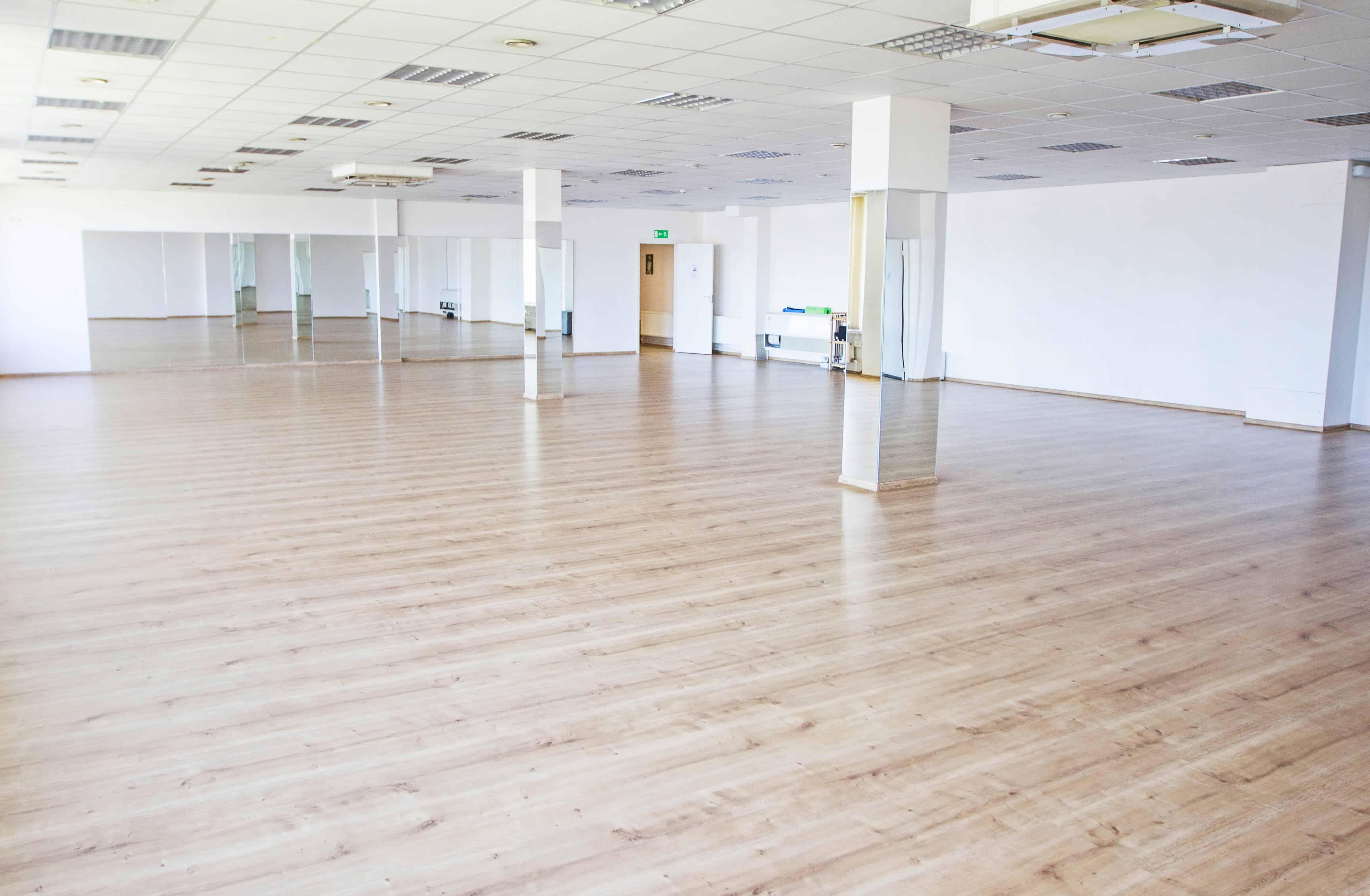 Didžioji salė - Plotas : 220 m2